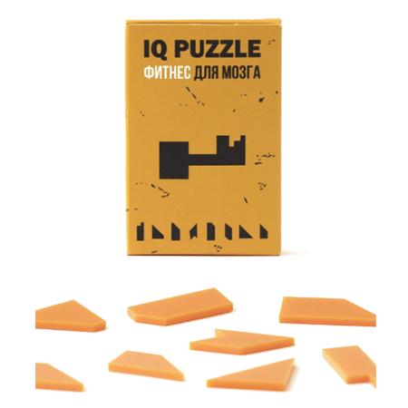 IQ Puzzle Ключик | АйКью Пазл